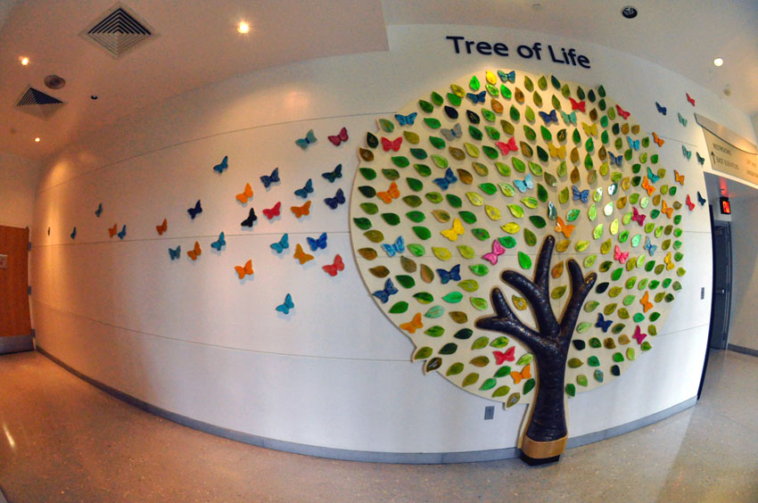 Tree Of Life Celebration Honors Organ Donors